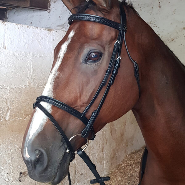 Bridle Braided Solo